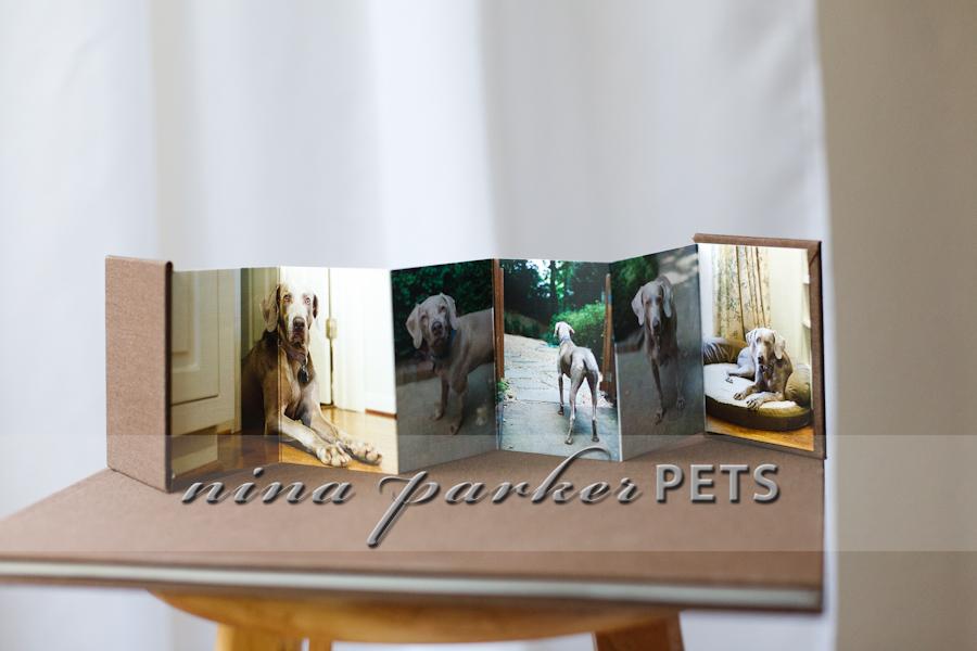 DogBooks_08_NinaParkerPets