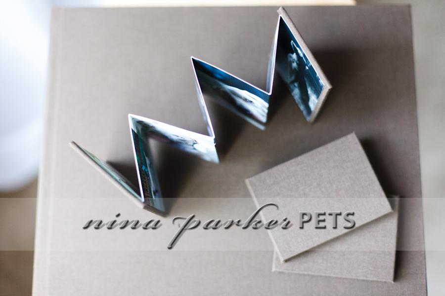 DogBooks_11_NinaParkerPets