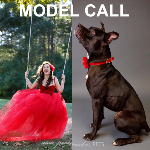 Glamour Pet Model Call Nina Parker