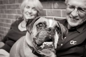 Atlanta-Dog-Photographer-Nina-Parker-PETS-IMG_0325.jpg